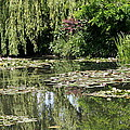 Monets Lilypond - Giverny by Christiane Schulze Art And Photography