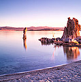 Mono Lake Sunrise by Tanya Harrison