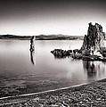 Monochromatic Mono Lake Sunrise by Tanya Harrison