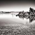 Monochrome Mono Lake Sunrise by Tanya Harrison