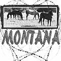 Montana Horse Design by Susan Kinney