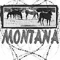 Montana Horse Design by Susan Kinney