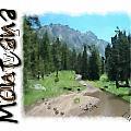Montana Howdy by Susan Kinney
