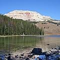 Montana100 0883 by Michael Peychich