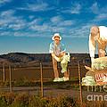 Monterey Farmers by Sherry Davis