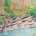 Montlake In Winter by Herschel Pollard