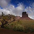 Monument Valley Vista by Ellen Heaverlo