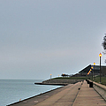 Moody And Lonely Lakefront by Bruce Leighty