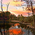 Moon And Pond by Randall Branham