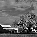 Moon Lit Farm by Todd Hostetter