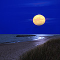 Moon On The Beach by Randall Branham