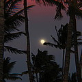 Moon Over Hawaii by Raquel Amaral