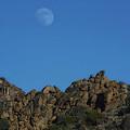 Moon Rise Joshua Tree by Linda Dunn
