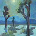 Moon Shadows At Joshua by Diane McClary