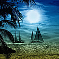 Moonlight Sail - Key West by Bill Cannon