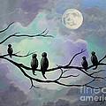 Moonlight Sonata by Stacey Zimmerman