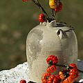 Moonshine Jug And Pumpkin On A Stick by Kathy Clark