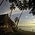 Moorea, Society Islands by Michael S. Lewis