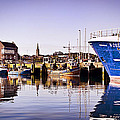 Moored Up by Chris Cardwell