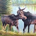 Moose Secrets by Patti Gordon