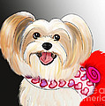 Morkie Valentine  by Catia Lee