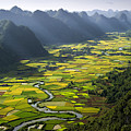 Morning In Valley by By Hoang Hai Thinh