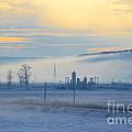 Morning Landscape In Winter by Gabriela Insuratelu
