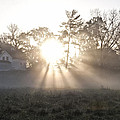 Morning Light At Valley Forge Farm by Bill Cannon