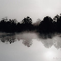 Morning Mist Reflection by La Rae  Roberts