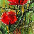 Morning Poppies by Mona Edulesco