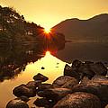 Morning Rays by Svetlana Sewell