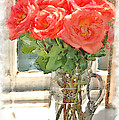 Morning Roses by Donna Bentley