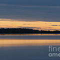 Morning Sun Rising At Arctic Sea by Heiko Koehrer-Wagner