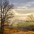 Morning Trees by Debra and Dave Vanderlaan