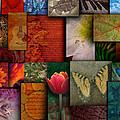 Mosaic Earth Tone Nature Rough Patterns by Angela Waye