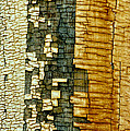 Mosaic Of Time by Vicki Pelham