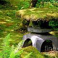 Mossy Japanese Garden Lantern by Carol Groenen