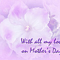 Mother's Day Greeting Card - African Violets by Mother Nature