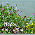 Mother's Day - Wildflowers By The Pond by Mother Nature