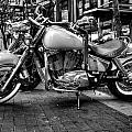 Motor Cycle by Vinnie Oliveri