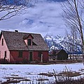 Moulton's Pink House On Mormon Row by Eric Tressler