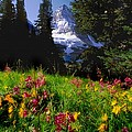 Mount Assiniboine by Jerry Kobalenko