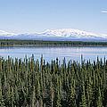 Mount Drum, Sanford And Wrangell by Rich Reid