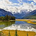 Mount Kitchener Reflected In Pond by Yves Marcoux