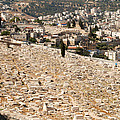 Mount Of Olives by Eva Kaufman