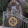 Mount Palomar Winery by Viktor Savchenko