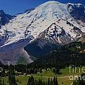 Mount Rainier Again by Angela Q