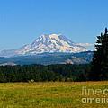Mount Rainier by Greg Norrell