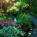 Mount Usher Gardens, Co Wicklow by The Irish Image Collection