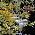Mount Usher Gardens, River Vartry, Co by The Irish Image Collection